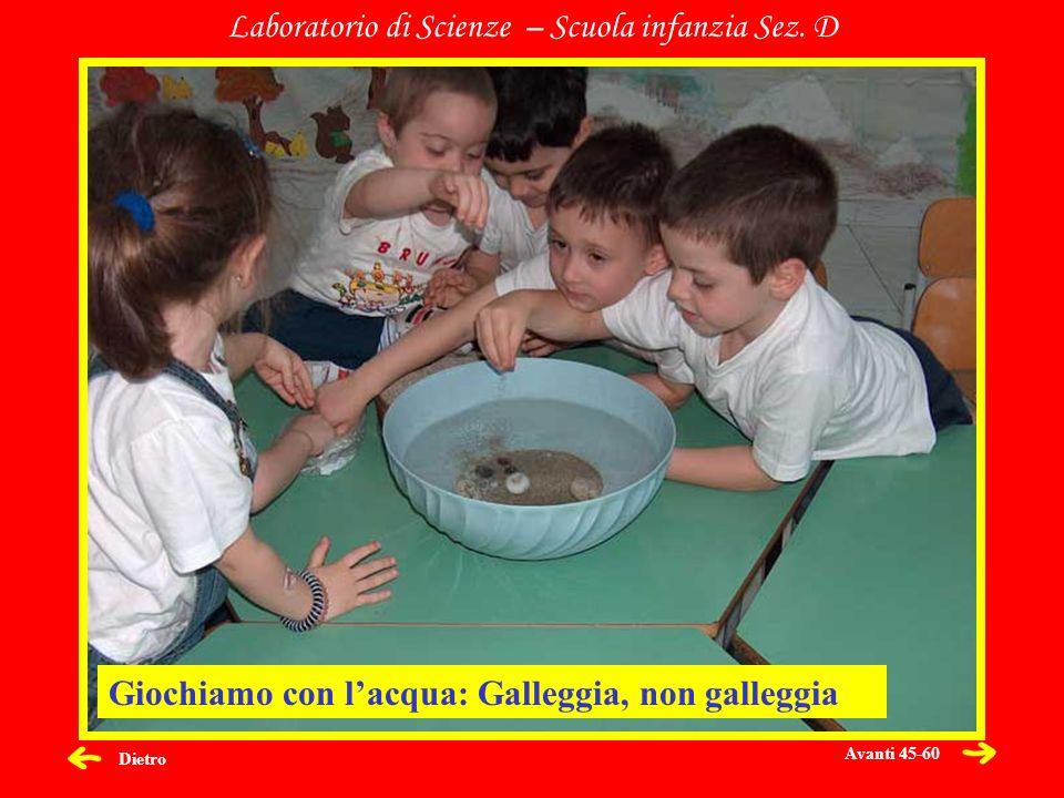 Dietro Laboratorio di Scienze – Scuola infanzia Sez. D Giochiamo con lacqua: Galleggia, non galleggia Avanti 45-60