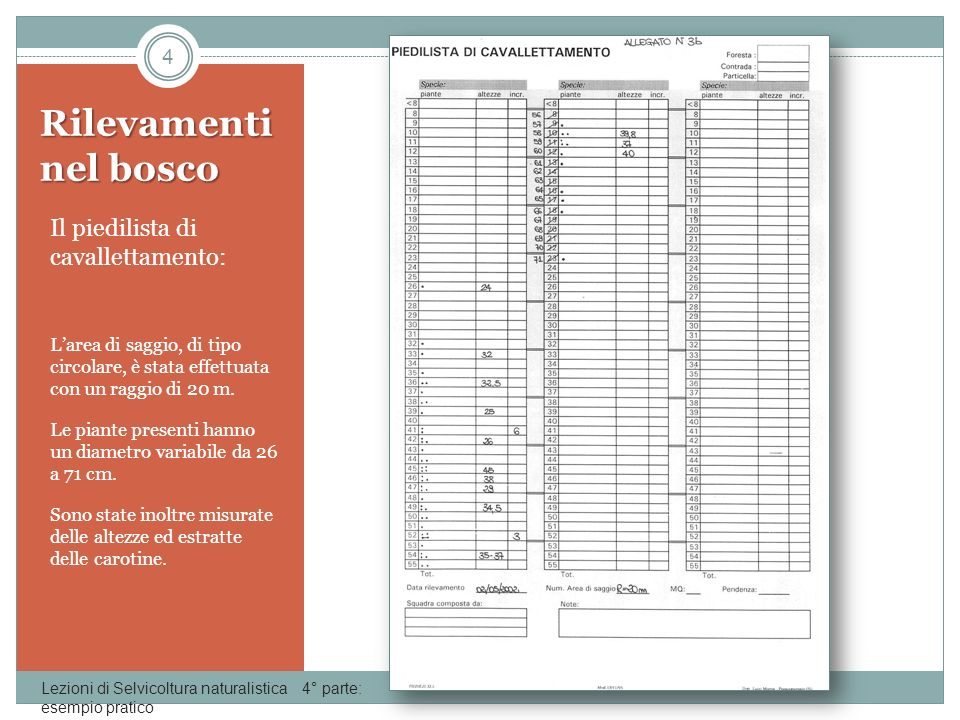 Calcoli statistici Lezioni di Selvicoltura naturalistica 4° parte: esempio pratico 5 Una prima tabella riporta i dati rilevati nel bosco raggruppati per classi di diametro.