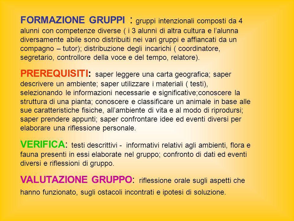 FORMAZIONE GRUPPI : gruppi intenzionali composti da 4 alunni con competenze diverse ( i 3 alunni di altra cultura e lalunna diversamente abile sono di