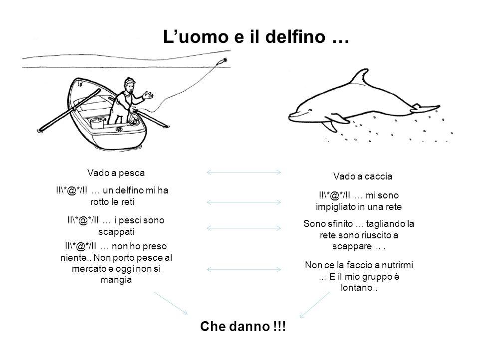 Vado a pesca Vado a caccia !!\*@*/!! … un delfino mi ha rotto le reti !!\*@*/!! … mi sono impigliato in una rete !!\*@*/!! … i pesci sono scappati Son