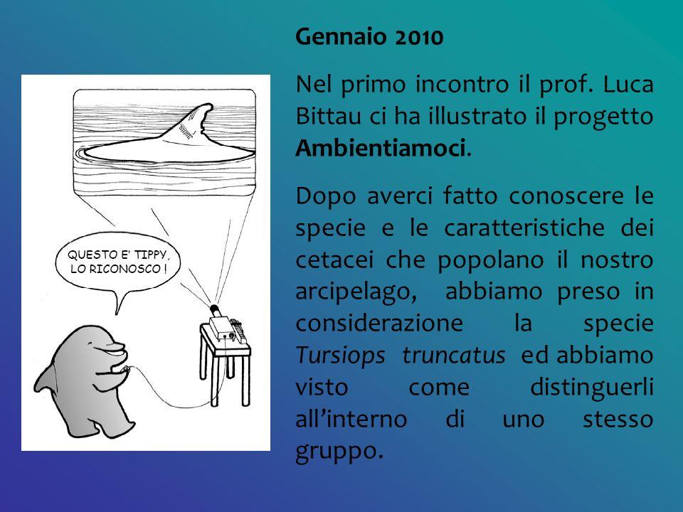 Gennaio 2010 Nel primo incontro il prof. Luca Bittau ci ha illustrato il progetto Ambientiamoci. Dopo averci fatto conoscere le specie e le caratteris