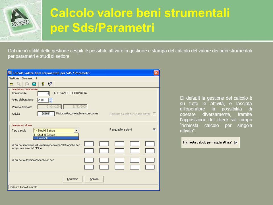 Calcolo valore beni strumentali per Sds/Parametri Di default la gestione del calcolo è su tutte le attività, è lasciata alloperatore la possibilità di