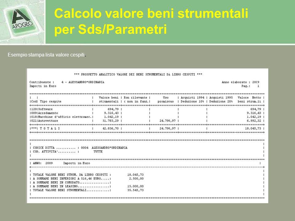 Calcolo valore beni strumentali per Sds/Parametri Esempio stampa lista valore cespiti.