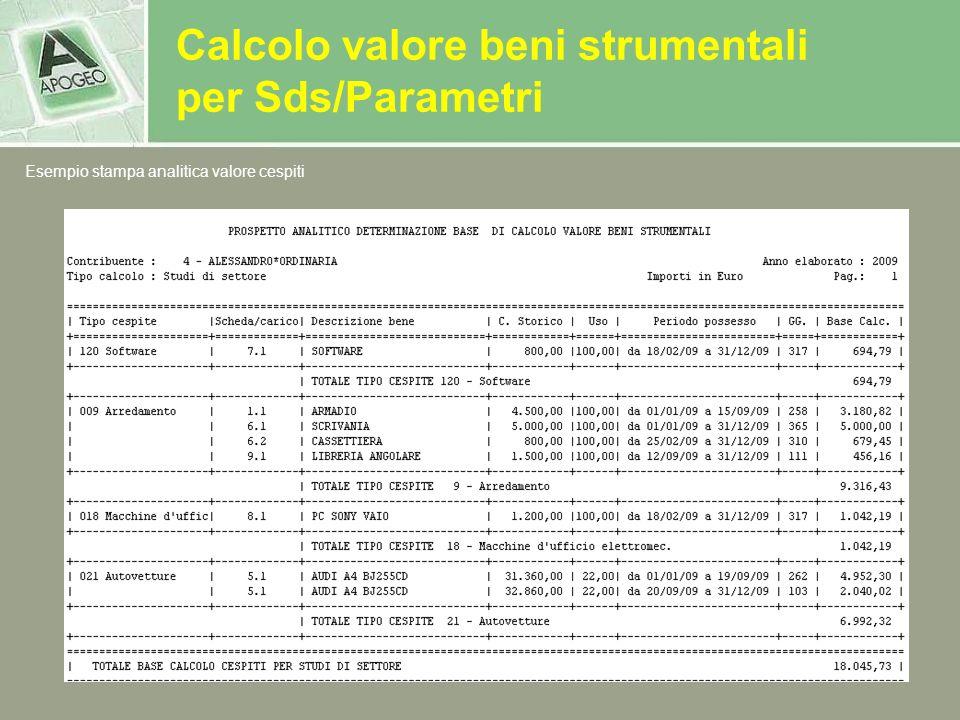 Calcolo valore beni strumentali per Sds/Parametri Esempio stampa analitica valore cespiti