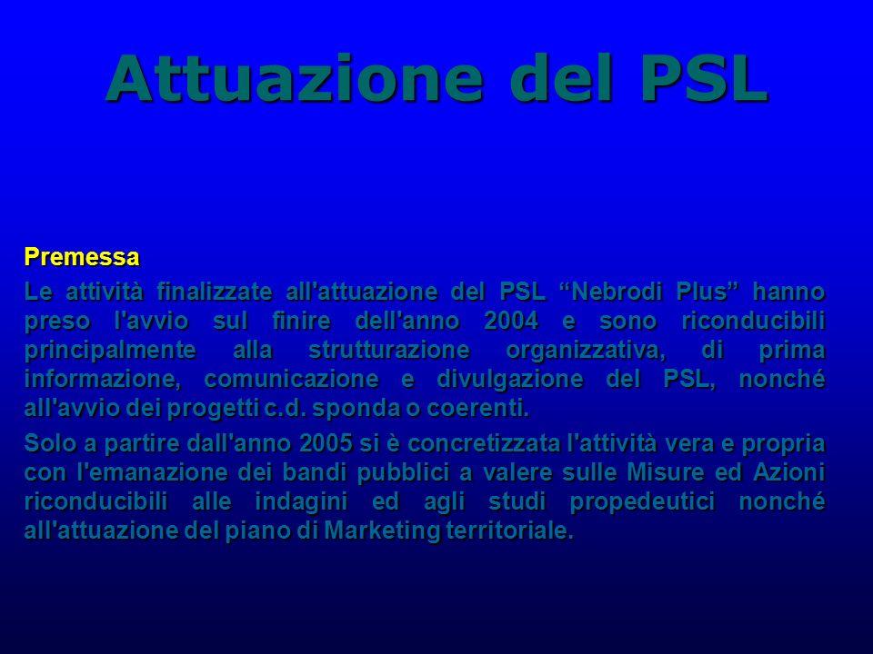 Attuazione del PSL Premessa Le attività finalizzate all attuazione del PSL Nebrodi Plus hanno preso l avvio sul finire dell anno 2004 e sono riconducibili principalmente alla strutturazione organizzativa, di prima informazione, comunicazione e divulgazione del PSL, nonché all avvio dei progetti c.d.