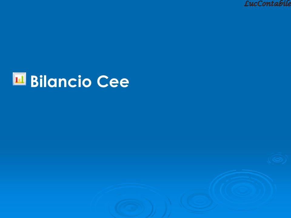 Bilancio Cee