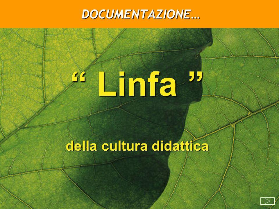 DOCUMENTAZIONE… Linfa Linfa della cultura didattica