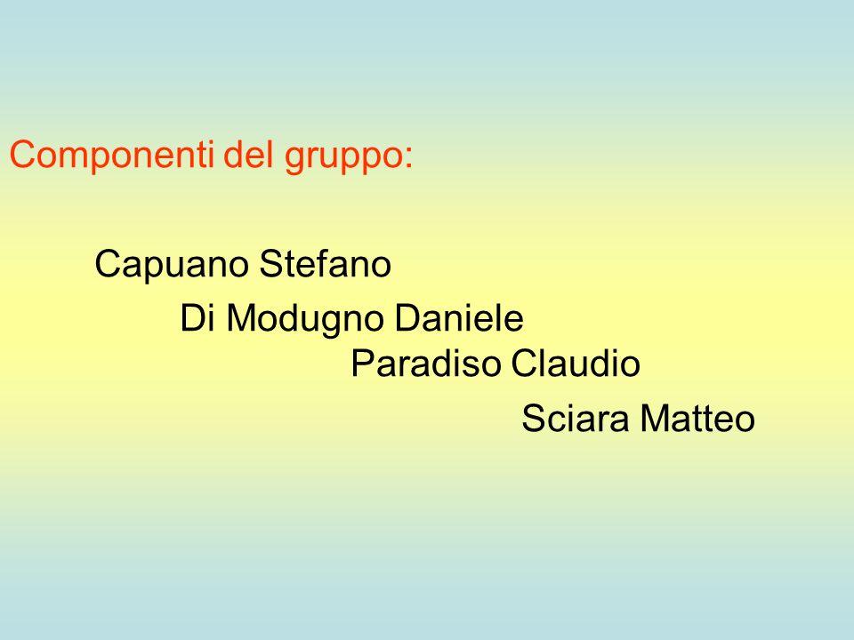 Componenti del gruppo: Capuano Stefano Di Modugno Daniele Paradiso Claudio Sciara Matteo