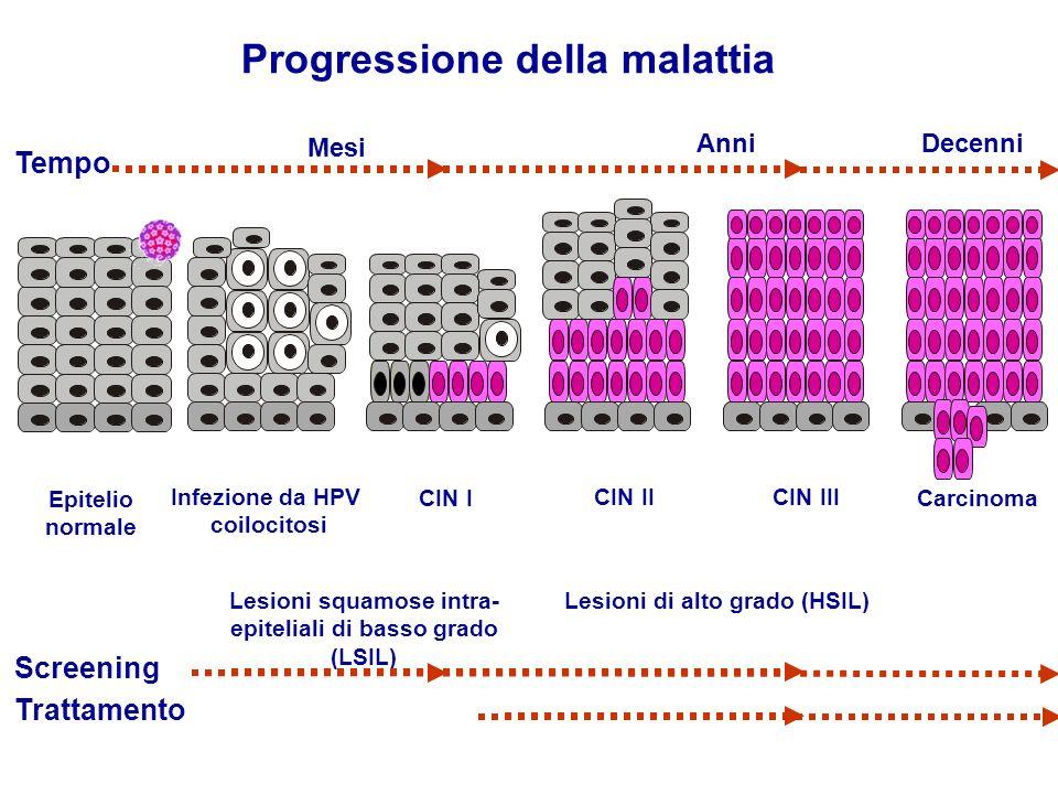 Progressione della malattia Epitelio normale Infezione da HPV coilocitosi CIN I Lesioni squamose intra- epiteliali di basso grado (LSIL) CIN II CIN II