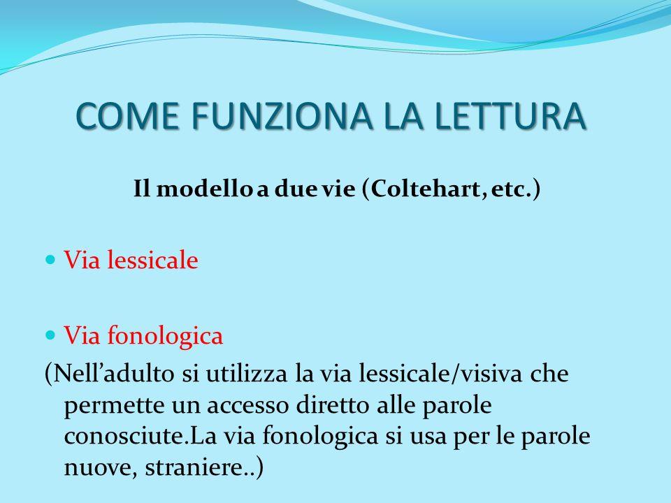 COME FUNZIONA LA LETTURA Il modello a due vie (Coltehart, etc.) Via lessicale Via fonologica (Nelladulto si utilizza la via lessicale/visiva che perme