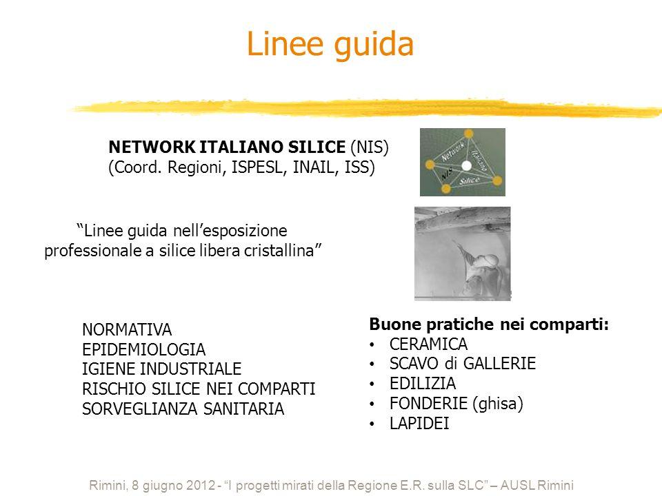 NETWORK ITALIANO SILICE (NIS) (Coord. Regioni, ISPESL, INAIL, ISS) Linee guida nellesposizione professionale a silice libera cristallina NORMATIVA EPI