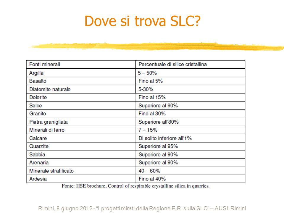 Dove si trova SLC? Rimini, 8 giugno 2012 - I progetti mirati della Regione E.R. sulla SLC – AUSL Rimini