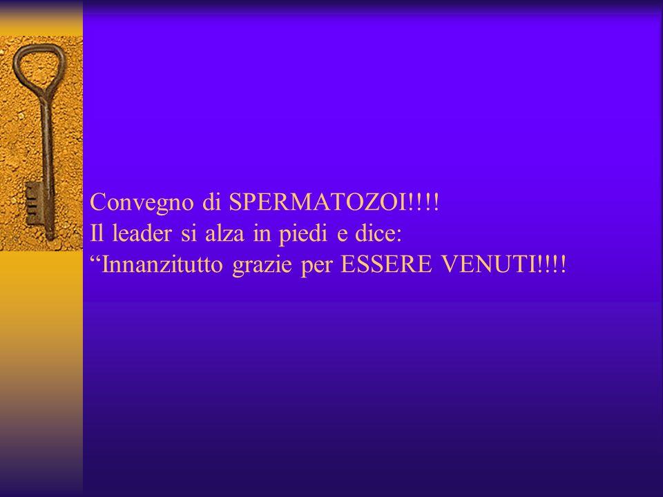 Convegno di SPERMATOZOI!!!.