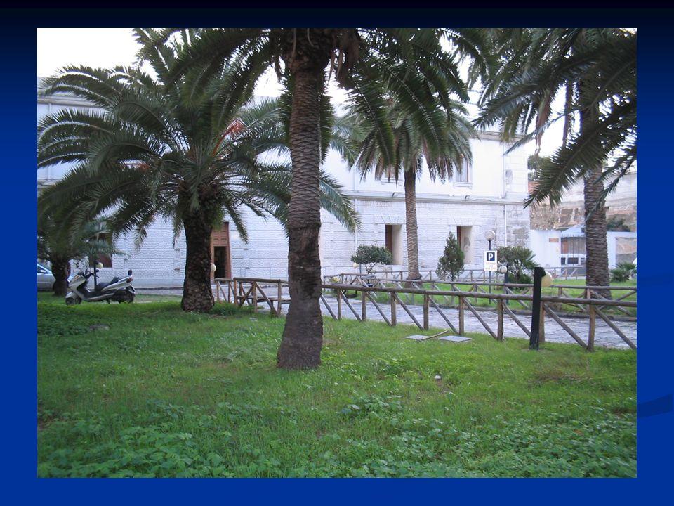 Risorse di personale La Comunità Ministeriale di Reggio Calabria è annessa al Centro di Prima Accoglienza che accoglie i minori arrestati o fermati fino alludienza di convalida.