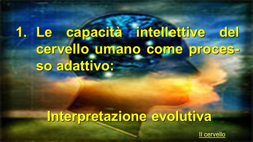 1.Le capacità intellettive del cervello umano come proces- so adattivo: Interpretazione evolutiva Interpretazione evolutiva Il cervello