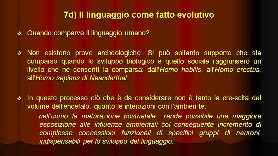 7d) Il linguaggio come fatto evolutivo Quando comparve il linguaggio umano? Quando comparve il linguaggio umano? Non esistono prove archeologiche. Si
