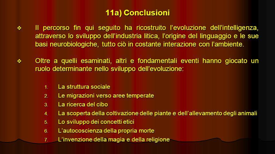 11a) Conclusioni Il percorso fin qui seguito ha ricostruito levoluzione dellintelligenza, attraverso lo sviluppo dellindustria litica, lorigine del li