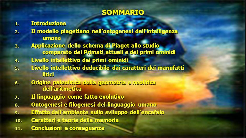 SOMMARIO 1. Introduzione 2. Il modello piagetiano nellontogenesi dellintelligenza umana 3. Applicazione dello schema di Piaget allo studio comparato d