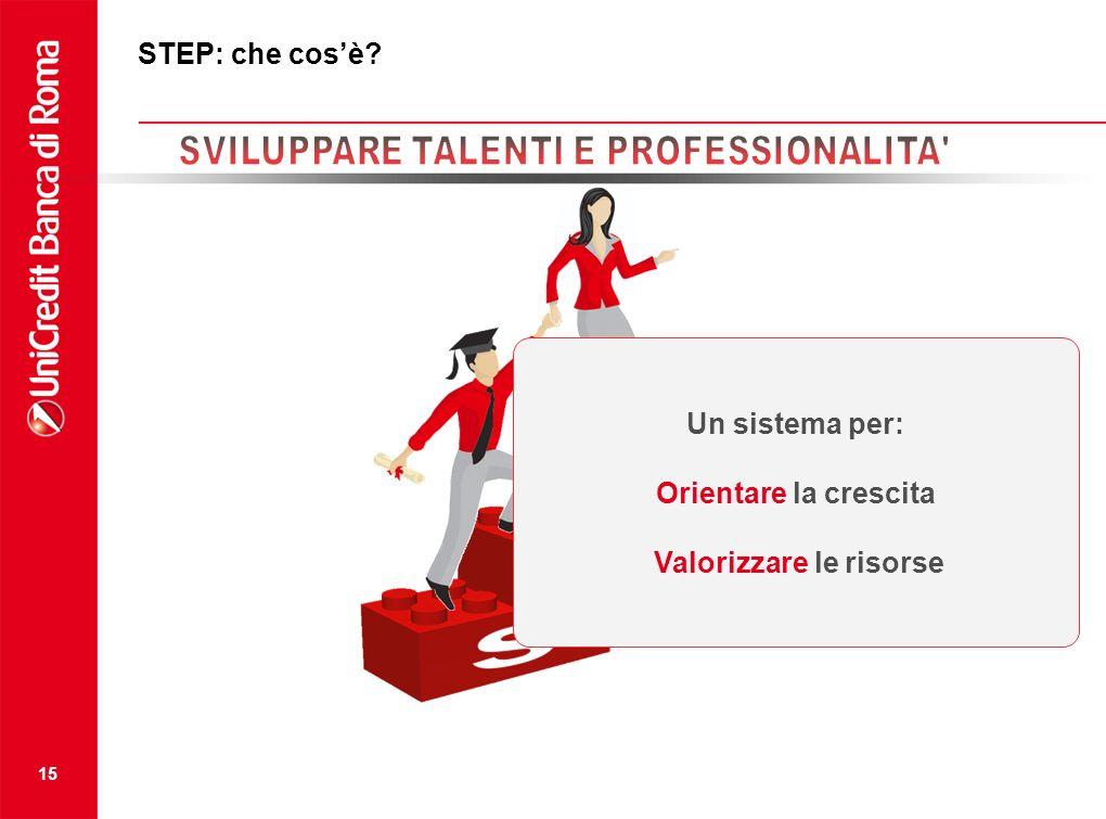 15 STEP: che cosè? Un sistema per: Orientare la crescita Valorizzare le risorse