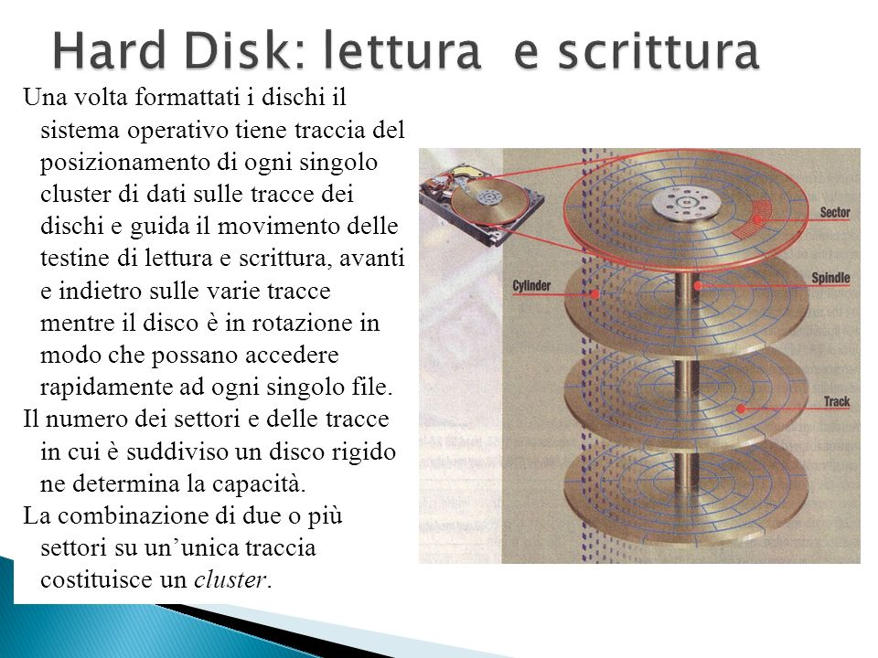 Un hard disk è strutturato per registrare dati su cilindri, tracce e settori (clusters, tracks, sectors). I settori sono dei cerchi concentrici, le tr