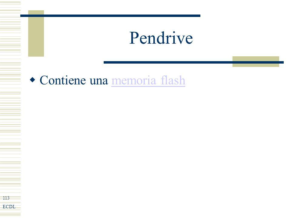 113 ECDL Pendrive Contiene una memoria flashmemoria flash