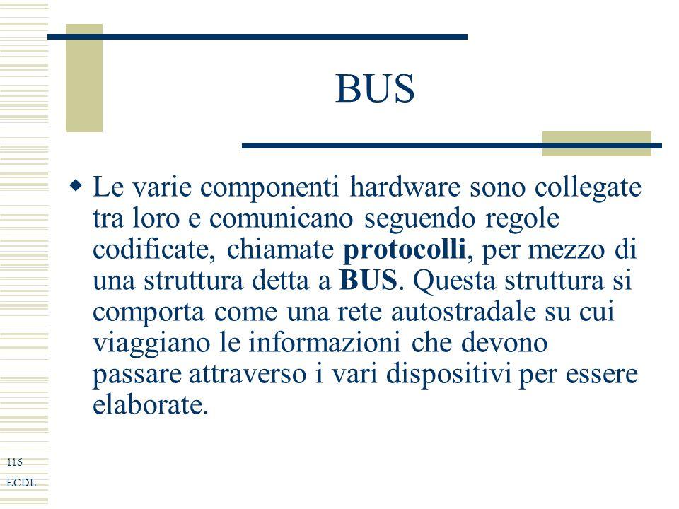 116 ECDL BUS Le varie componenti hardware sono collegate tra loro e comunicano seguendo regole codificate, chiamate protocolli, per mezzo di una struttura detta a BUS.
