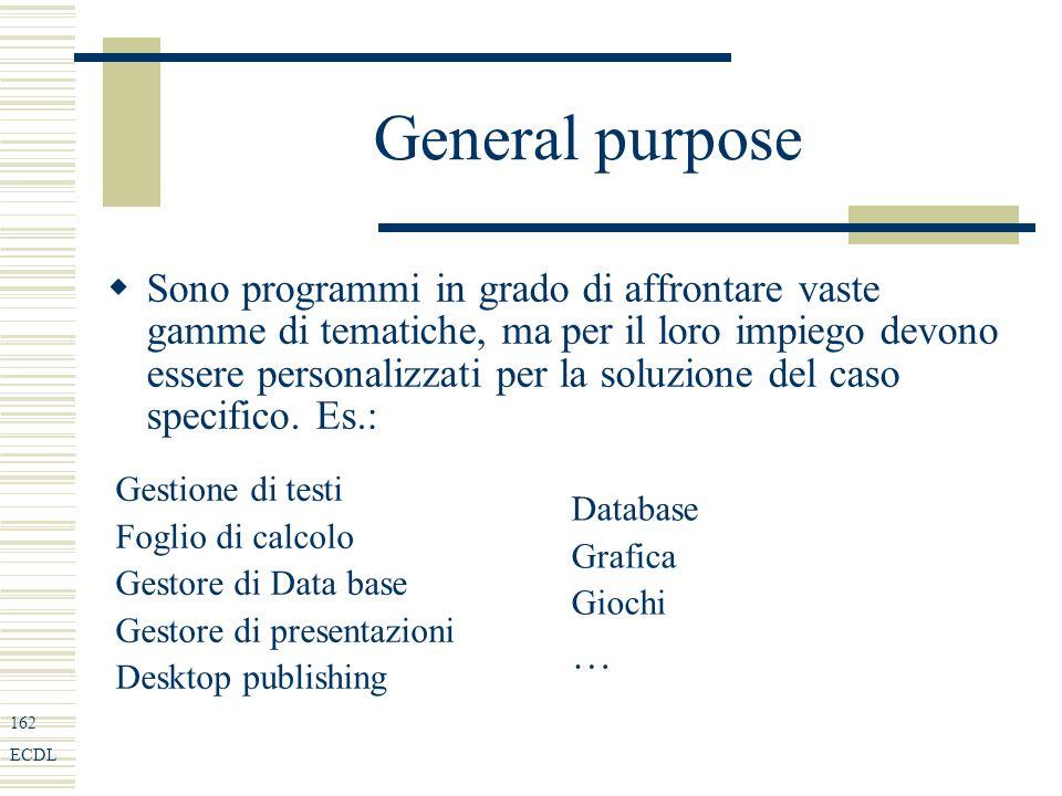 162 ECDL General purpose Sono programmi in grado di affrontare vaste gamme di tematiche, ma per il loro impiego devono essere personalizzati per la soluzione del caso specifico.