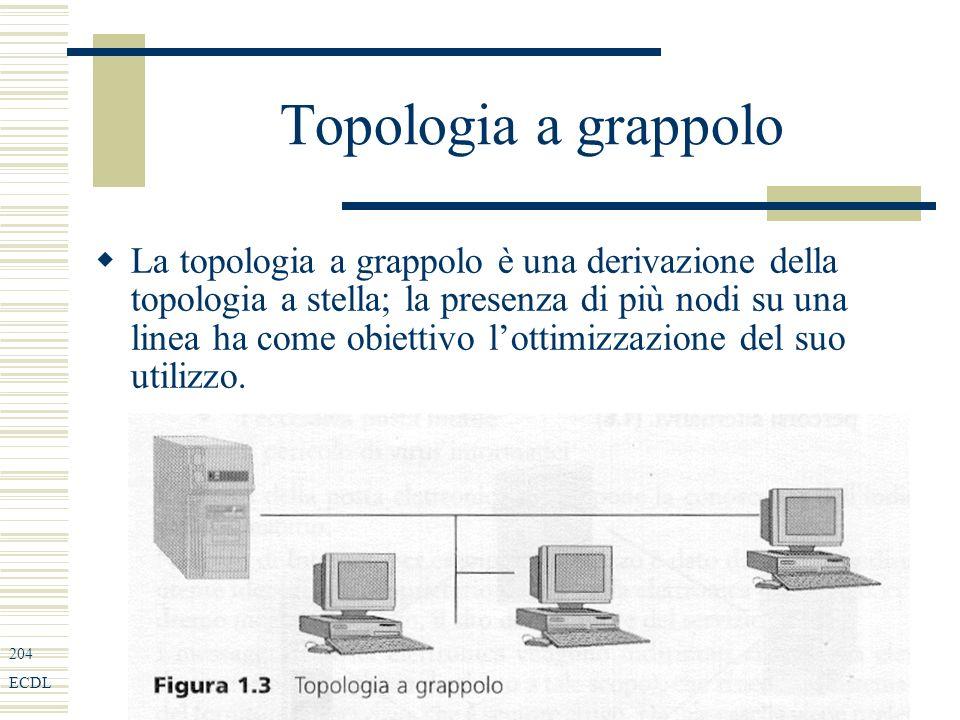 204 ECDL Topologia a grappolo La topologia a grappolo è una derivazione della topologia a stella; la presenza di più nodi su una linea ha come obiettivo lottimizzazione del suo utilizzo.