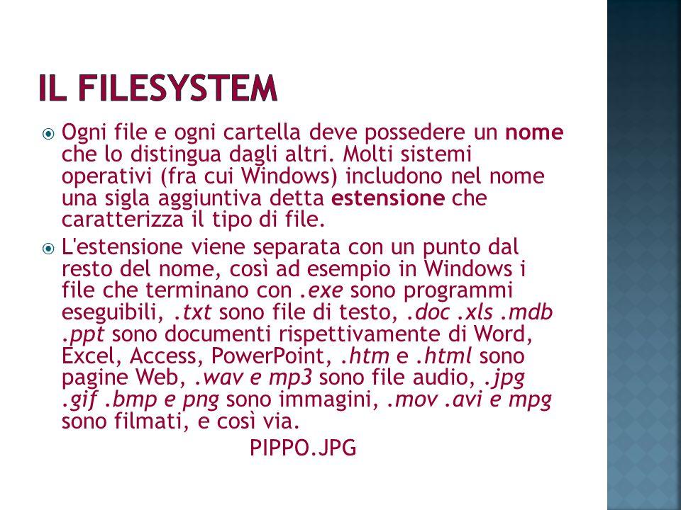 Ogni file e ogni cartella deve possedere un nome che lo distingua dagli altri. Molti sistemi operativi (fra cui Windows) includono nel nome una sigla