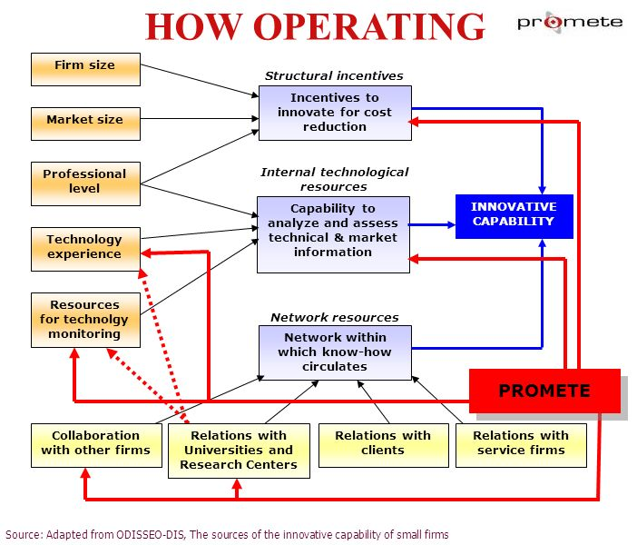 HOW OPERATING Source: Adapted from ODISSEO-DIS, The sources of the innovative capability of small firms Firm size Market size Professional level Techn