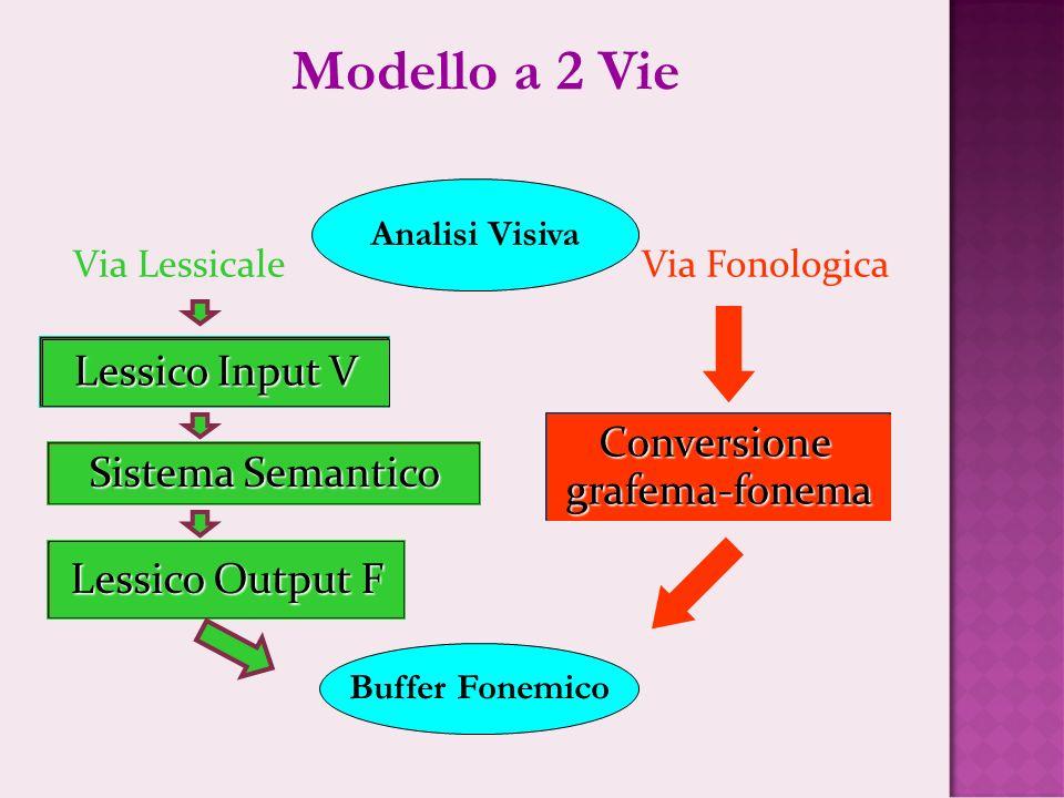 Via Lessicale Via Fonologica Lessico Input V Conversionegrafema-fonema Sistema Semantico Lessico Output F Analisi Visiva Buffer Fonemico Modello a 2 V