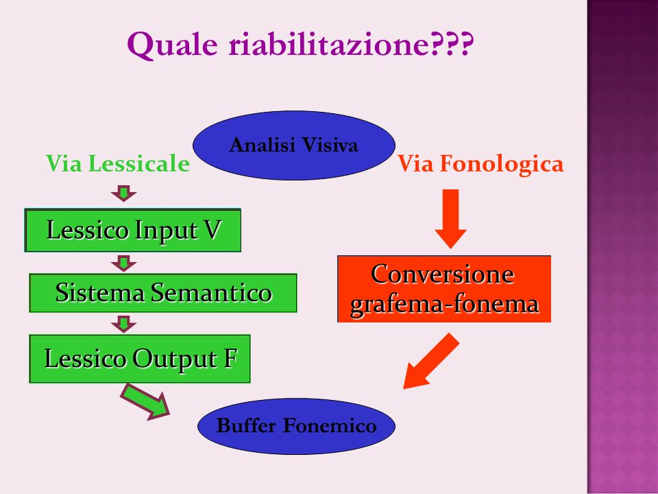 Via Lessicale Via Fonologica Lessico Input V Conversionegrafema-fonema Sistema Semantico Lessico Output F Analisi Visiva Buffer Fonemico Quale riabili