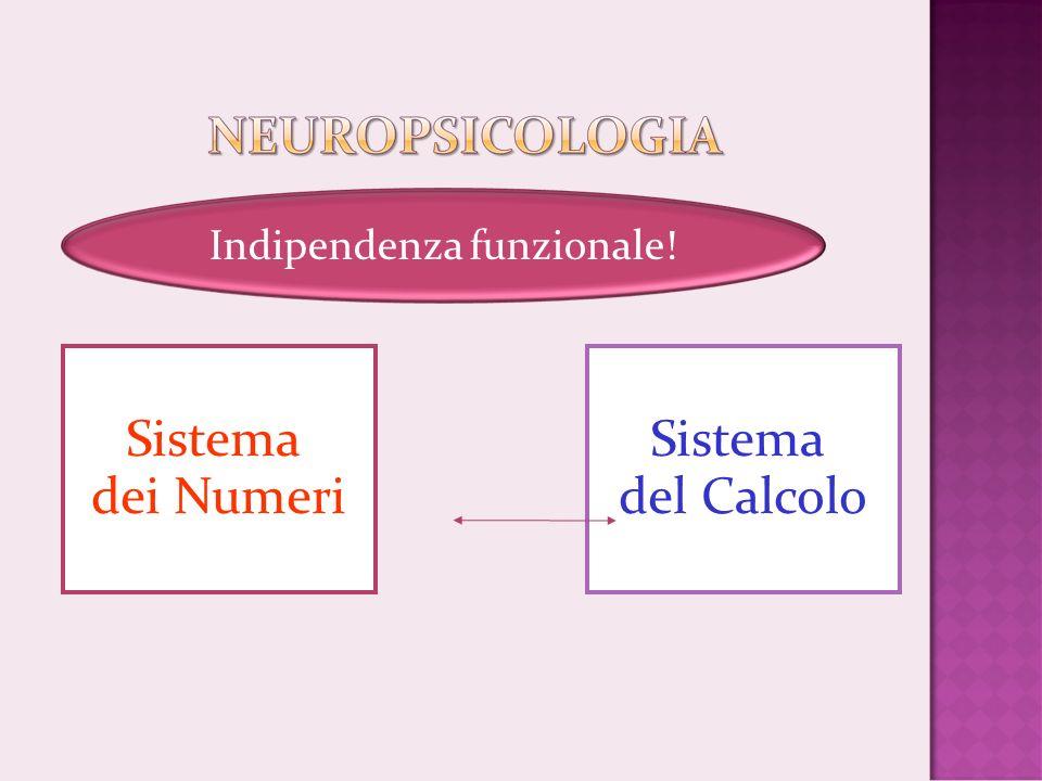Sistema dei Numeri Indipendenza funzionale! Sistema del Calcolo