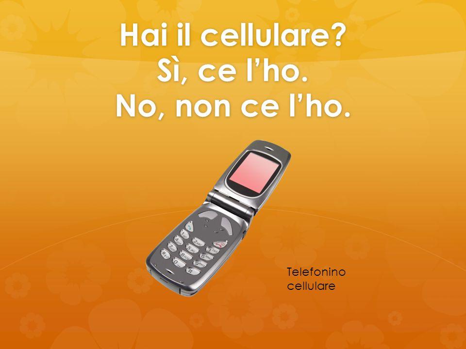 Hai il cellulare? Sì, ce lho. No, non ce lho. Telefonino cellulare