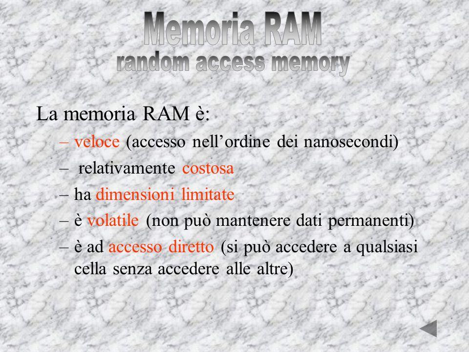 Memoria ram Memoria secondaria Hard Disk Floppy Disk CD DVD