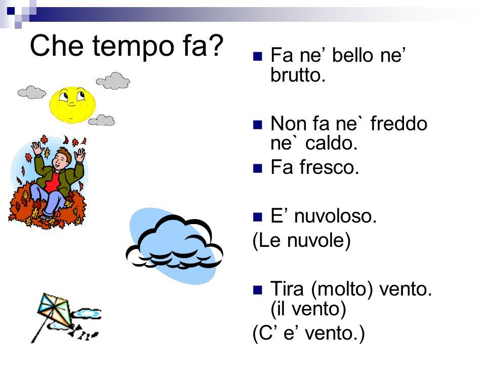 Vocabolario Che tempo fa? Fa bel tempo. C e (molto) sole. (il sole) Fa (molto) caldo. E afoso.