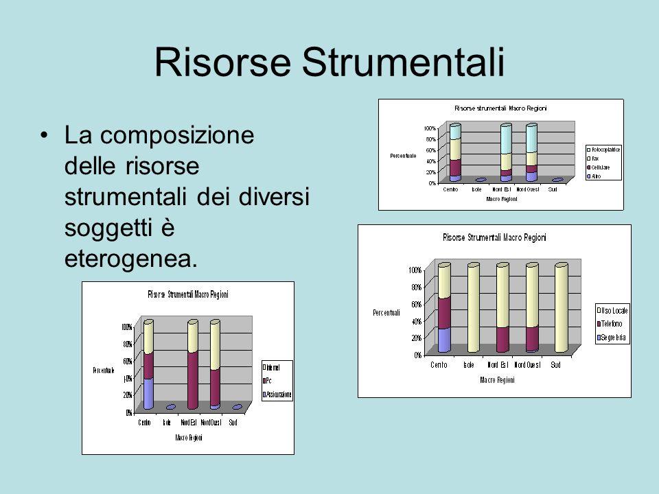 Risorse Strumentali La composizione delle risorse strumentali dei diversi soggetti è eterogenea.