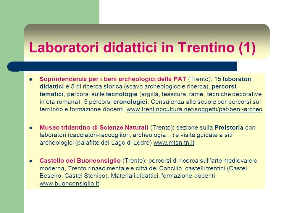 Laboratori didattici in Trentino (1) Soprintendenza per i beni archeologici della PAT (Trento): 15 laboratori didattici e 5 di ricerca storica (scavo