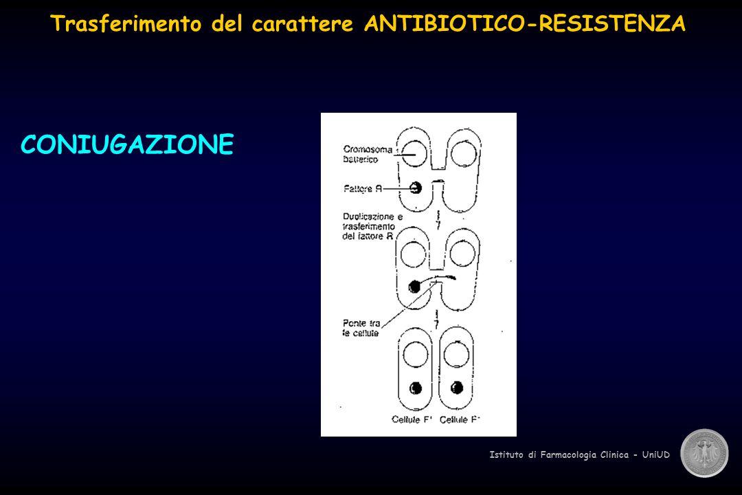 Istituto di Farmacologia Clinica - UniUD CONIUGAZIONE Trasferimento del carattere ANTIBIOTICO-RESISTENZA