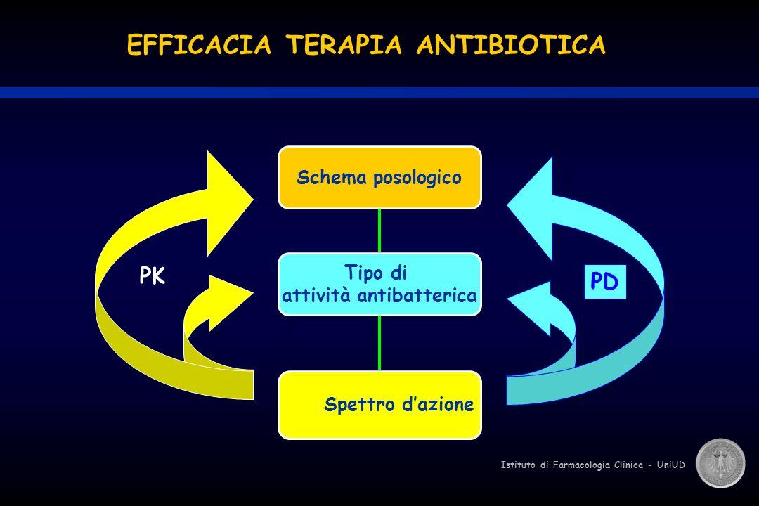 Istituto di Farmacologia Clinica - UniUD PK PD Schema posologico Spettro dazione Tipo di attività antibatterica EFFICACIA TERAPIA ANTIBIOTICA