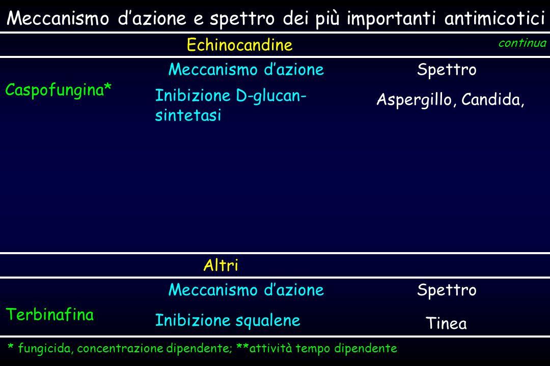 Meccanismo dazione e spettro dei più importanti antimicotici Echinocandine Meccanismo dazioneSpettro Caspofungina* Inibizione D-glucan- sintetasi Aspe