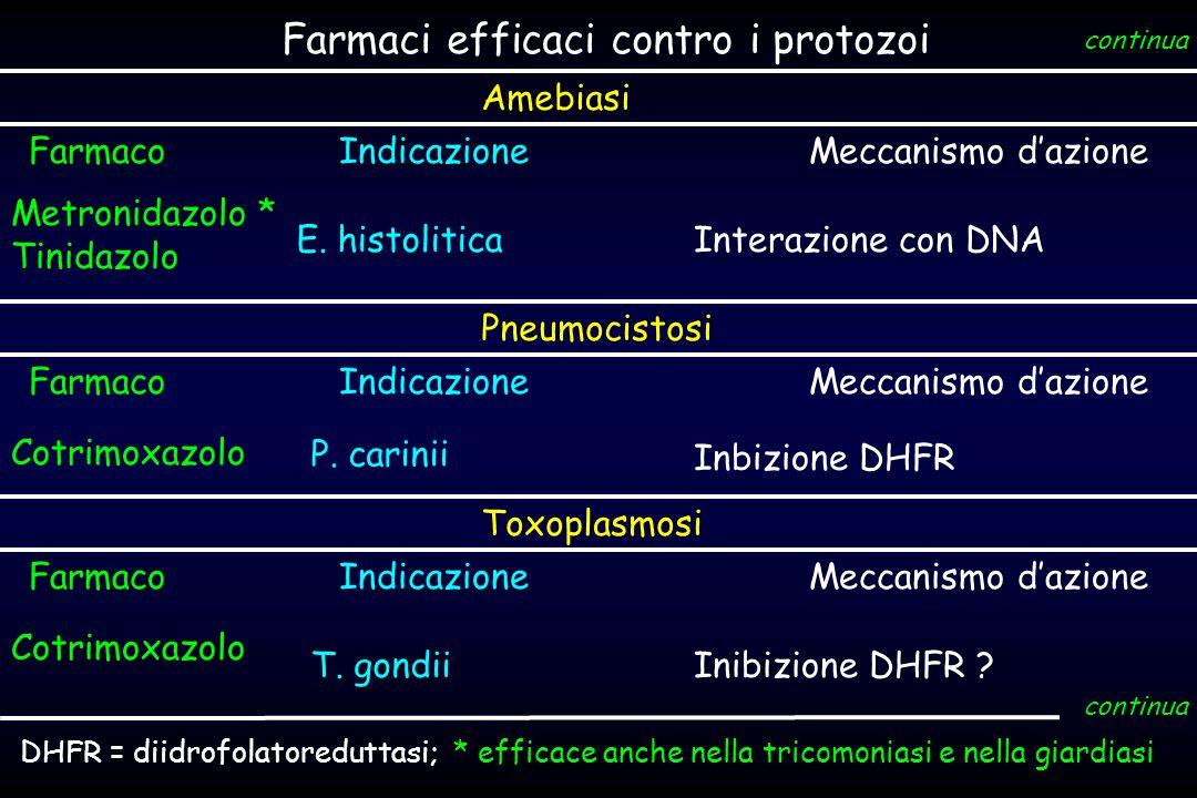 Farmaci efficaci contro i protozoi IndicazioneMeccanismo dazione Metronidazolo * Tinidazolo E. histoliticaInterazione con DNA Farmaco continua Amebias