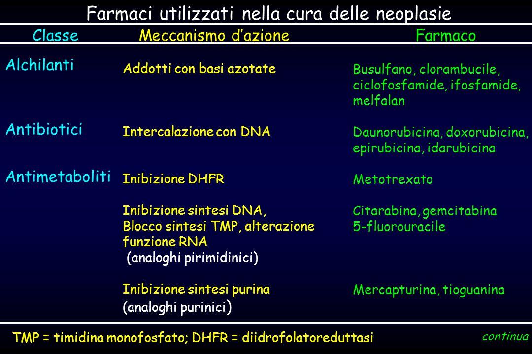 Farmaci utilizzati nella cura delle neoplasie ClasseMeccanismo dazioneFarmaco Alchilanti Antibiotici Antimetaboliti Addotti con basi azotate Intercalazione con DNA Inibizione DHFR Inibizione sintesi DNA, Blocco sintesi TMP, alterazione funzione RNA (analoghi pirimidinici) Inibizione sintesi purina (analoghi purinici ) Busulfano, clorambucile, ciclofosfamide, ifosfamide, melfalan Daunorubicina, doxorubicina, epirubicina, idarubicina Metotrexato Citarabina, gemcitabina 5-fluorouracile Mercapturina, tioguanina continua TMP = timidina monofosfato; DHFR = diidrofolatoreduttasi