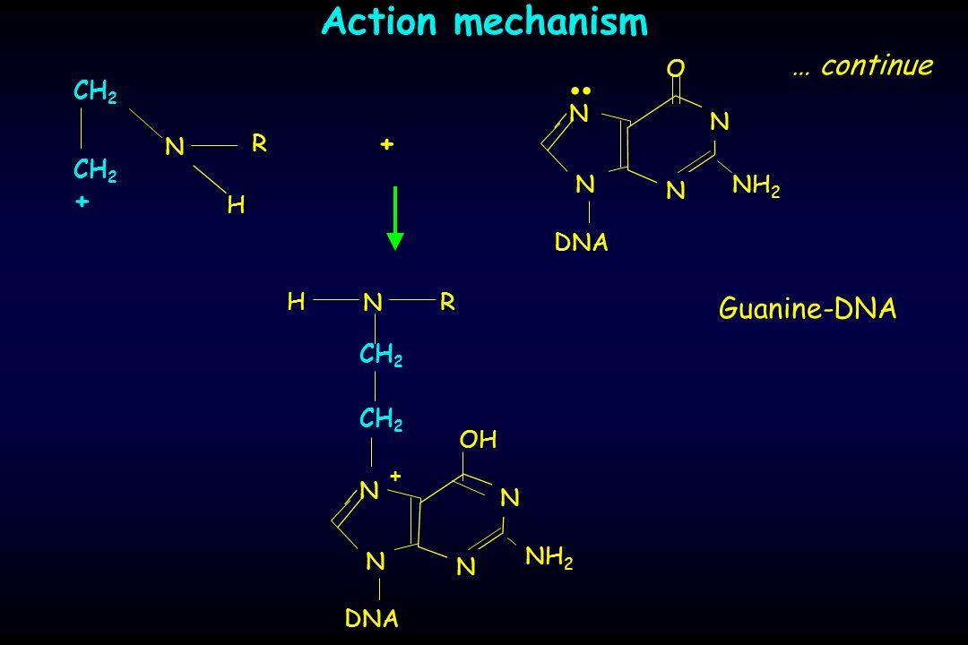 Action mechanism … continue H CH 2 N R + + H CH 2 N R Guanine-DNA NH 2.. O DNA N N N N N N N N OH + NH 2