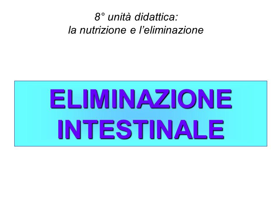 ELIMINAZIONE INTESTINALE 8° unità didattica: la nutrizione e leliminazione