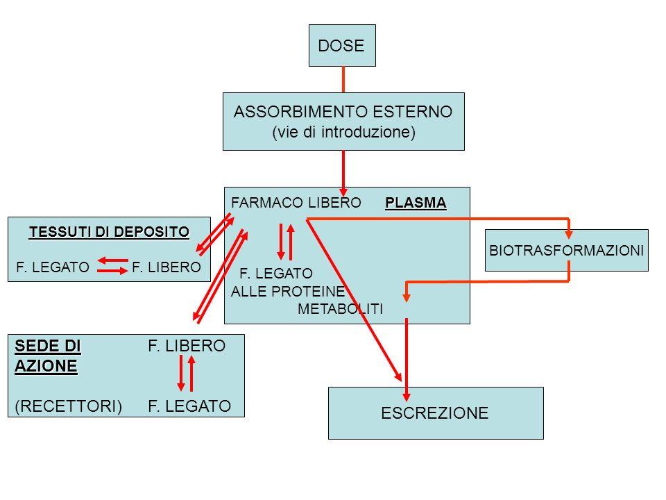 DOSE ASSORBIMENTO ESTERNO (vie di introduzione) PLASMA FARMACO LIBERO PLASMA F. LEGATO ALLE PROTEINE METABOLITI TESSUTI DI DEPOSITO F. LEGATO F. LIBER