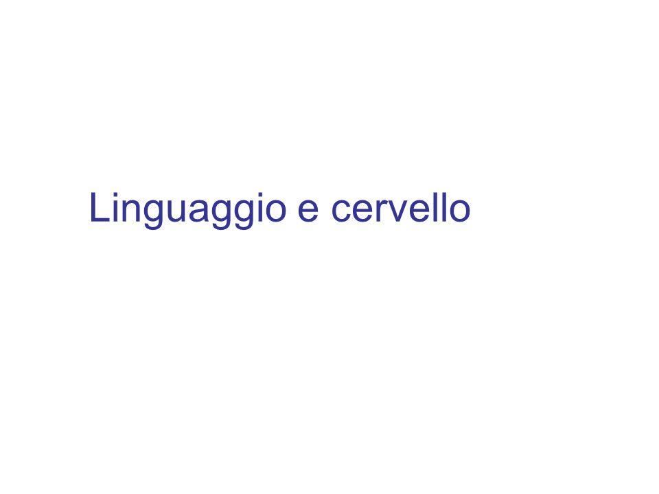 Linguaggio e cervello