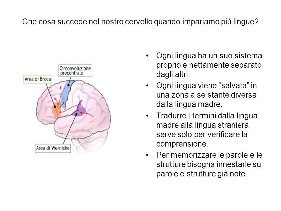 Che cosa succede nel nostro cervello quando impariamo più lingue? Ogni lingua ha un suo sistema proprio e nettamente separato dagli altri. Ogni lingua