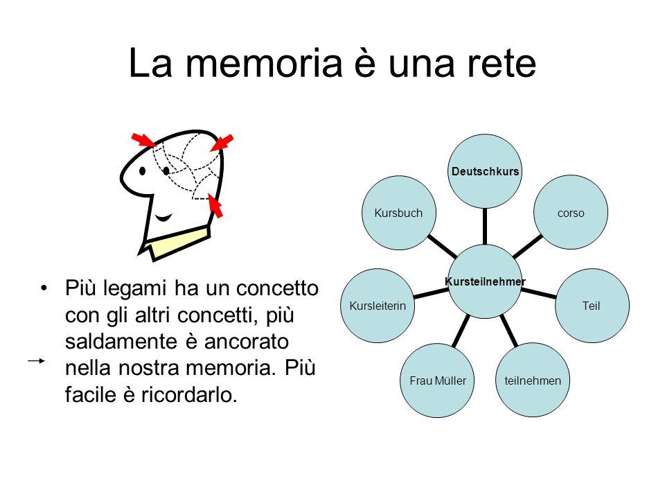 La memoria è una rete Più legami ha un concetto con gli altri concetti, più saldamente è ancorato nella nostra memoria. Più facile è ricordarlo. Kurst