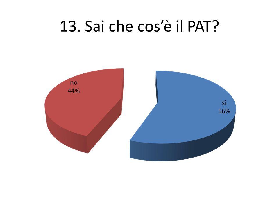 13. Sai che cosè il PAT?